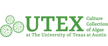 UTEX Culture Collection of Algae at The University of Texas Living Algae Holdings