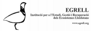 Egrell, Lleida - Hymenoptera