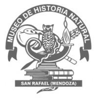 Colección MMHNSR (Museo Municipal de Historia Natural de San Rafael) Helechos y Criptógamas