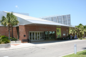 Florida Museum of Natural History