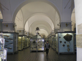 Zoological Institute