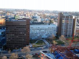 Yeshiva University Albert Einstein College of Medicine