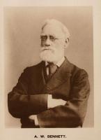 Alfred William Bennett