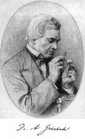 August Grisebach