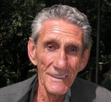 Cornelis Johannes Marinkelle