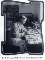 Edward Ernest Green