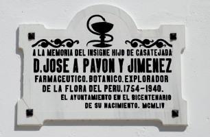 José Antonio Pavón